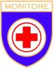 logo monitore